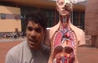 Het Klokhuis - Wat is orgaandonatie