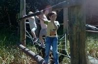 Kijk rond in de speelbossen van Staatsbosbeheer