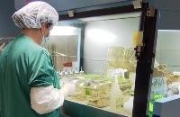 Jeugdjournaal - Waarom zijn er nog steeds dierproeven