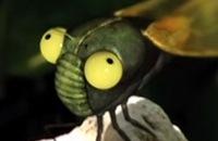 Miniscule - Middagdutje filmpjes