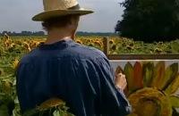 Willem Wever hot - Waarom sneed Vincent van Gogh eigenlijk zijn oor af