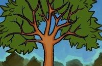 Waarom veranderen bomen in de herfst? filmpjes