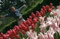 Uit mijn bol - Een vrolijk liedje over de lente