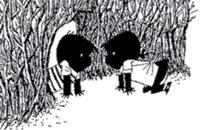 Jip en Janneke - Jip en Janneke spelen samen