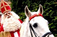 Sinterklaas en Amerigo puzzel