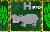 Alpha-Zoo
