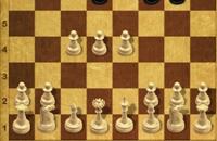 Meeester schaak