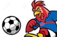 Haanvoetbal