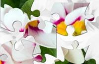 Zomer Bloemen legpuzzel