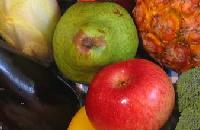 Voedingganzenbord